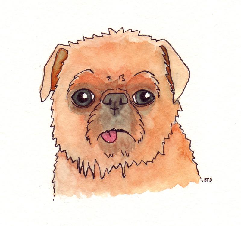 http://www.pugslope.com/blog/wp-content/uploads/2012/05/Dr.Zira_.jpg